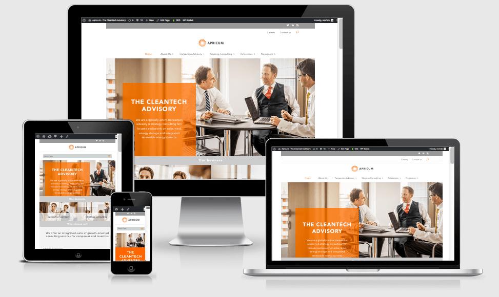 Website Preview Apricum Group